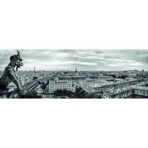 Dino panoraampusle 1000 tk Pariis 1/1