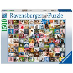 Ravensburger pusle 1500 tk 99 kassi 1/2